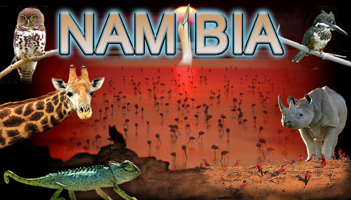 Namibia Photography Workshop Tour